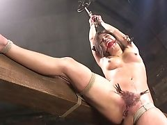 Audition, BDSM, Big Tits, Bondage, Brunette, Clit, Dildo, Hairy, HD, Horny,