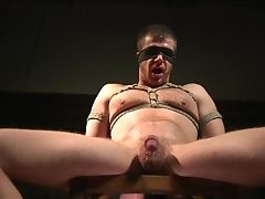 Bondage, Competition, Domination, Fetish, HD, Muscular,