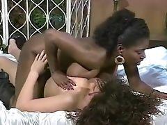 Negros, Clássicos, Ebony Ayes, Keisha Dominguez, Latinas, Lésbicas , Retro, Vintage ,